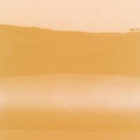 Dayglow orange